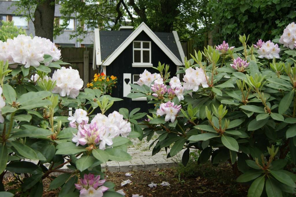 Legehuset set fra rhododendron buskene