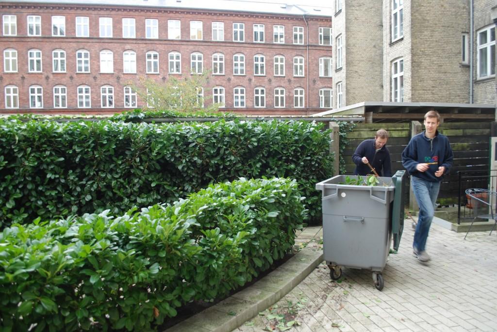 Bladene samles i en affaldsbeholder.